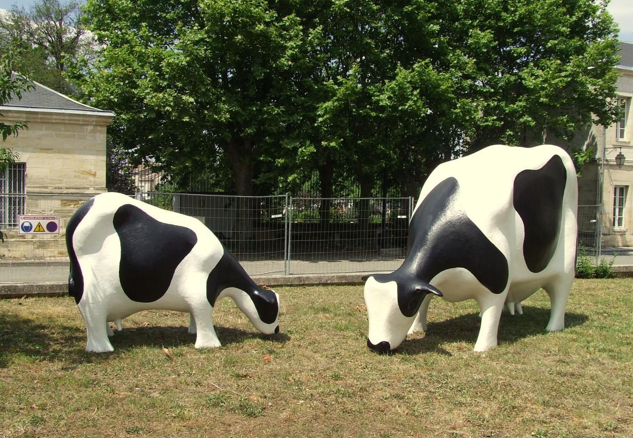 caserne Lamarque, du bétail