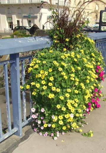 jaune sur le pont de pierre