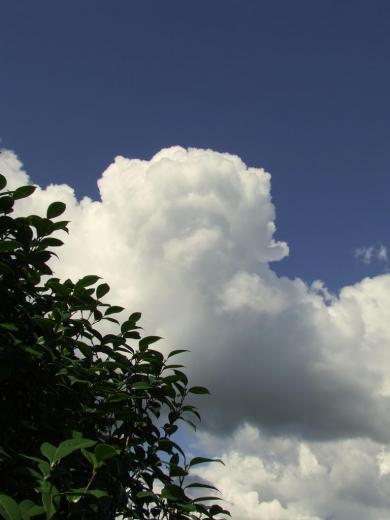 nuages au dessus du parc paysager de Lande