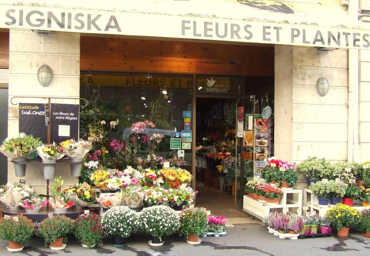 Signiska-Fleurs